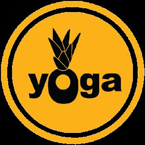 Pineapple Yoga + Cycling Studio logo